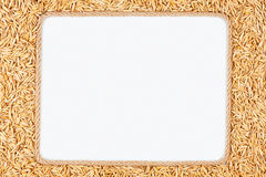 Frame made of rope with  oats  lying on a white background Stock Photos