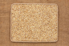 Frame made of rope with  pearl barley  grains on sackcloth Stock Photo