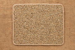 Frame made of rope with rye grains on sackcloth Stock Images