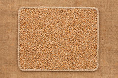 Frame made of rope with wheat  grains on sackcloth Stock Images