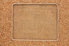 Frame made of rope with wheat grains on sackcloth Royalty Free Stock Photography