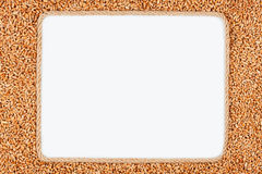 Frame made of rope with  wheat lying on a white background Royalty Free Stock Photography