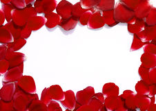 Frame made of rose petals Royalty Free Stock Photography