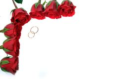 Frame made from roses and rings Royalty Free Stock Photo