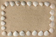 Frame made of sea shells on the sand Stock Photos