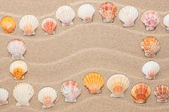 Frame made of seashell on a wavy sand Royalty Free Stock Photos