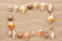 Frame made of seashell on a wavy sand Stock Image