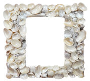 Frame is made of seashells Stock Images