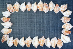 Frame made ​​of shells on the jeans. Royalty Free Stock Photo