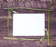 Frame made of stems on white. grass frame top view space empty Royalty Free Stock Image