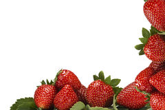 Frame made of strawberries. Royalty Free Stock Image