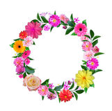 Frame Made from Summer Pink Flowers and Green Leaves Isolated on Stock Photography