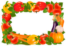 Frame made of vegetables. Stock Photos