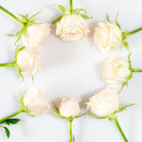 frame made of white roses. Love and romantic theme. Royalty Free Stock Photography
