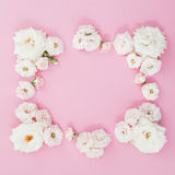 Frame made of white roses on pink background. Flat lay, top view. Flower background. Frame of flowers. Flowers frame wreath Royalty Free Stock Image