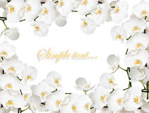 Frame with many orchids. Congratulatory frame with many orchids Royalty Free Stock Photo