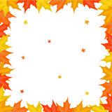 Frame from maple leaves Stock Photos