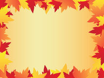 Frame with maple leaves. Beautiful  illustration Stock Photography