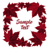 Frame with Maple leaves Stock Images