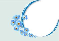Frame met bloem en lichte bezinningen Stock Fotografie
