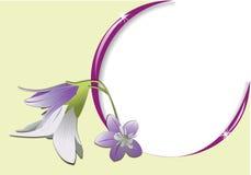 Frame met bloem en lichte bezinningen Stock Afbeeldingen