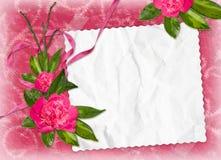 Frame met bloem op de roze achtergrond Stock Foto's