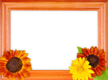 Frame met bloemen Royalty-vrije Stock Afbeeldingen