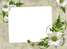 Frame met bloemen en linten Stock Foto's