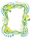 Frame met het gras en de bloemen Stock Afbeeldingen