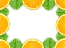 Frame met oranje fruit en groen blad Stock Fotografie
