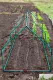 Frame mini greenhouse Stock Images