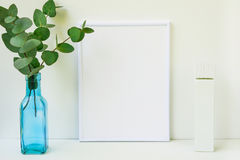 Frame mockup on white background, green eucalyptus branch in blue glass bottle, copyspace, blank tube Royalty Free Stock Photography