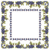 Frame napkin of blueberry. With branch and leaves. Seamless pattern. There are can be an inscription in the center Stock Photography