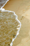 Frame of nature. Frame of water and sand with footmarks Royalty Free Stock Photography