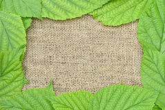 Frame Of Leaves On A Background Of Rough Cloth Royalty Free Stock Photo