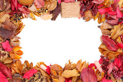 Frame Of Potpourri Stock Photography