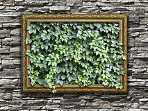Frame On The Stone Wall With Green Leaves Inside Royalty Free Stock Photo