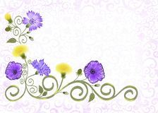 Frame with openwork ornament,  decorated violet flowers of cornflowers, Royalty Free Stock Photography