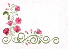Frame with openwork ornament  and flowers of pink Sweet pea Royalty Free Stock Photos