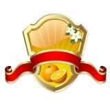 Frame with orange Royalty Free Stock Image