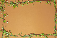 Frame orange green Royalty Free Stock Image