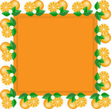 Frame of oranges Royalty Free Stock Photography