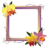 Frame with orchids Stock Images