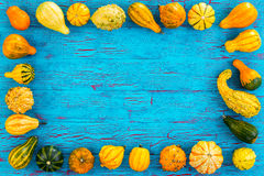 Frame of ornamental pumpkins and gourds Royalty Free Stock Image