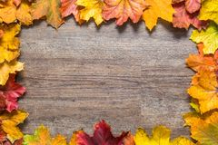 Frame out of colourful autumn leaves on wooden background Royalty Free Stock Image