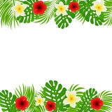 Frame of palm leaves and flowers Stock Photography