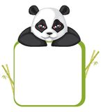 Frame with panda Stock Photography