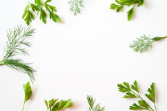 Frame with parsley and dill Royalty Free Stock Photography