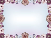 Frame with pastel colored flowers and color gradient copy space Stock Images