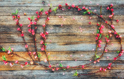 Frame from peach branches with pink flowers on a wooden background from granary boards with space for text Stock Photo